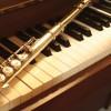 Dúo flauta y piano